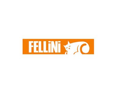 Fellini Kombi Teknik Servis