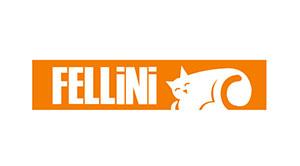 Fellini kombi tamiri, Fellini arızaları,